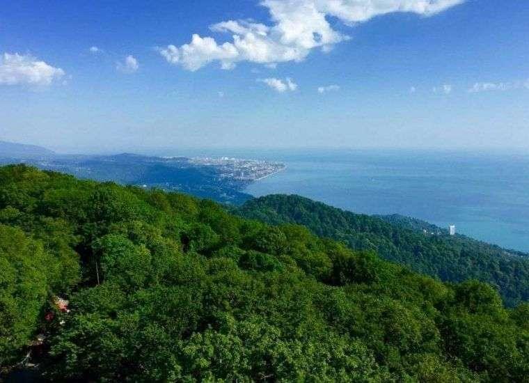 Отдых в Хосте 2021, снять жилье в Хосте без посредников по цене от 1500 руб., каталог арендного жилья у Чёрного моря, отзывы отдыхающих.